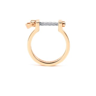 Ring Pont d'Amour